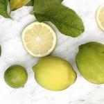 limón-dest