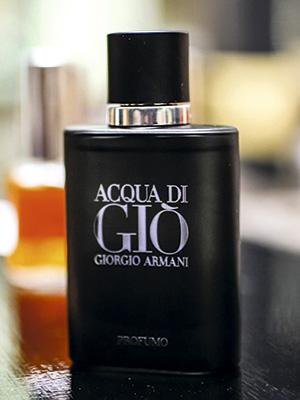 perfumista4ADENTRO