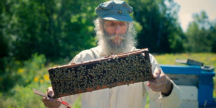 burt's-bees3