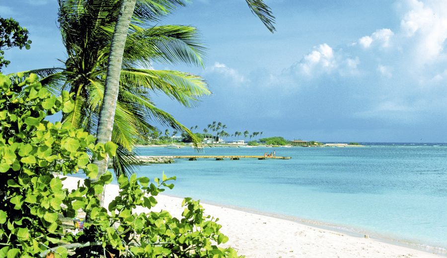 Aruba: destino wellness - Revista Mujer